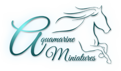 Aquamarine Miniatures